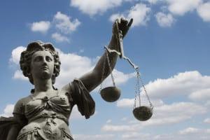 Die Marderabwehr mit Elektroschock ist laut Gesetz teilweise erlaubt