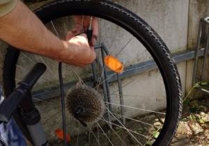 In einem Klappfahrrad-Test haben Räder entweder eine Ketten- oder Nabengangschaltung.