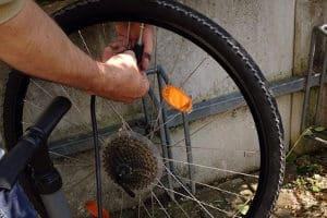 Mit einem Fahrrad-Werkzeugkoffer wie im Test kann das Rad selbst repariert werden.