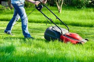 Ein Gerätehaus, das einem Test unterzogen wird, eignet sich sehr für das Verstauen von Gartengeräten.