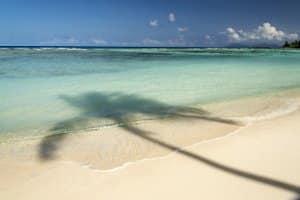 Auch für den Strandurlaub geeignet: Unterziehen Sie einen Solar-Charger einem Praxis-Test.