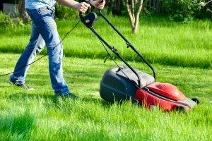 Der Maulwurfschreck ermöglicht durch Lärmbelästigung die ungestörte Nutzung des Rasens.
