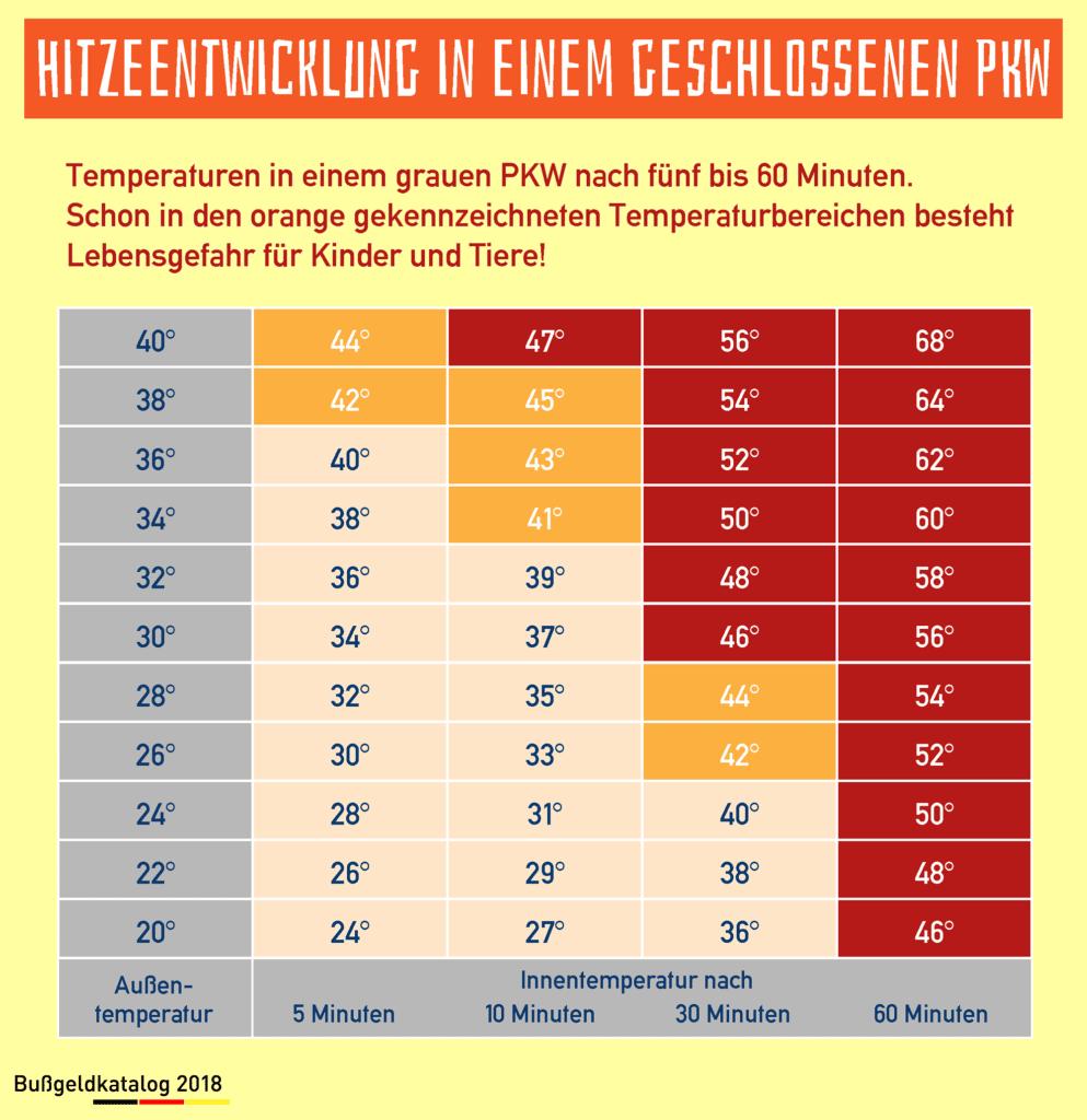 Auch ein guter Sonnenschutz kann beim Auto die Gefahr, einen Hitzschlag zu erleiden, nicht minimieren.