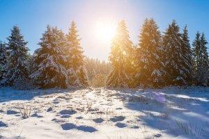 Unterziehen Sie Ihre Thermoreitstiefel einem Test, dann macht auch im Winter der Ausritt Spaß!