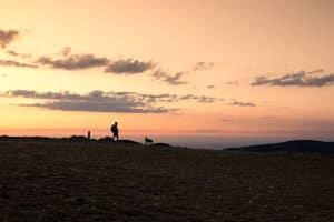 Beste Wandersocken: Oft können Merino-Wandersocken in einem Test überzeugen.
