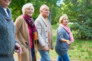 Wanderstöcke sind vor allem für ältere Wanderer zu empfehlen.