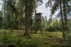 Günstige Zielfernrohre sind für die Jagd nur bedingt geeignet – meist haben sie nur einen vierfachen Zoom.