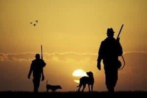 Ist der geplante Einsatz bei der Jagd, muss das Klappmesser in einem Test große Belastbarkeit aufweisen.