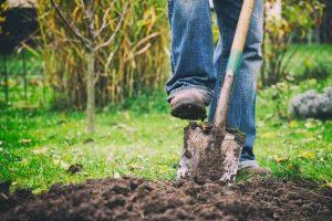 Bester Spaten gesucht? Im Selbst-Test können Sie Ihren persönlichen Gartenspaten-Testsieger herausfinden.