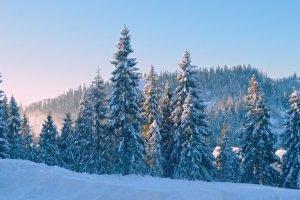 Bergschuhe können in einem Test unterschiedlich auf Kälte und Nässe reagieren.