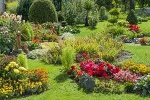 Persönlicher Test: Passt das Vogelhaus zu Ihrem Garten?