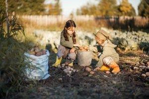 Kinder-Schubkarre: Kinder dürfen den Test gerne selbst machen und damit im Garten helfen.