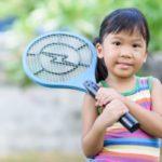 Ihr eigener Test für elektrische Insektenvernichter: Wie finden Sie das geeignete Modell?