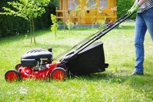 Eine Sense zu kaufen, kann auch für Nutzer eines Rasenmähers sinnvoll sein.