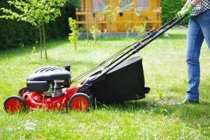 """Wir stellen vor in unserer """"Test & Vergleich""""- Kategorie: Rasenmäher für die Arbeit im Garten."""