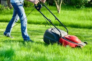 Welcher Rasenmäher ist der beste? Ein Rasenmäher, der sich Ihrem Garten anpasst!