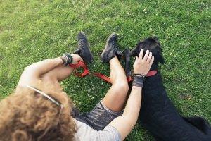 Manchmal ist ein Hundegeschirr im Vergleich zum Halsband die bessere Wahl - manchmal aber auch nicht.