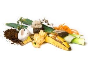 Komposter im Vergleich: Je nach Produkteigenschaften dauert es kürzer oder länger, bis Bioabfälle zersetzt sind.