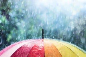 Sprinkler im persönlichen Test: Der Rasensprenger sollte sanft und gleichmäßig bewässern – wie natürlicher Regen.