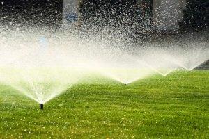 """Versenkbare Rasensprenger in der """"Test & Vergleich"""": Was Sprinkler können sollten."""