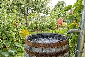 Bestes Hauswasserwerk: Es sollte auch bei großen Fördermengen nicht schlapp machen.