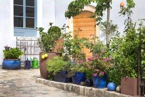 Damit ein Moosentferner auf Ihrer Terrasse einem eigenen Test standhält, sollte er auch wirksam gegen Flechten und Grünbelag sein.