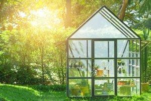 Nicht nur eine Profi-Motorsense kann im Test Ihrem Garten zu neuem Glanz verhelfen.