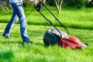 Bester Vertikutierer mit Lüfter: Wie ein Kombigerät im persönlichen Test Ihren Rasen verschönern kann, erfahren Sie hier.