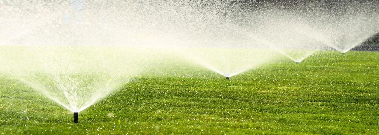 Bevor Sie eine Gartenpumpe kaufen, überlegen Sie, wofür Sie diese wirklich brauchen, z. B. für die Gartenbewässerung.