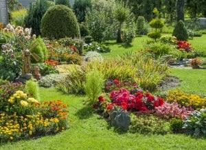 Welche Gartenpumpe wird Ihr Testsieger, um Ihr eigenes Fleckchen Erde zu versorgen?
