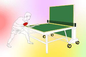 Gerade bei teuren Modellen lohnt es sich, vor dem Kauf Tischtennisschläger-Testberichte zu studieren.
