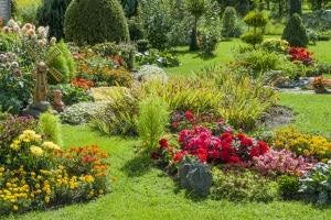 Ihr persönlicher Vertikutierer-Testsieger verwandelt Ihren Garten in ein Paradies.