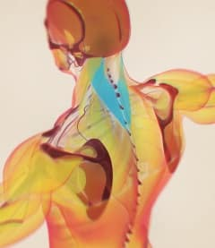 Es gibt spezielle Rücken-Nacken-Heizkissen. Ihr Test sollte aber evtl. auch auf vielfältigere Einsatzmöglichkeiten achten.