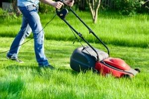 In Ihrem Test kann ein (Akku-)Rasentrimmer einen Rasenmäher wegen seiner geringen Schnittbreite unterstützen.