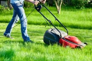 Sie sollten sich eine Gartensteckdose kaufen, wenn Sie elektrische Geräte im Garten nutzen (z. B. einen Rasenmäher).