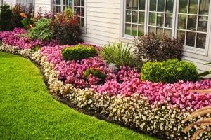 Wenn Sie einen Rasenkantenstecher kaufen, können Sie Rasen und Beete sauber voneinander trennen.