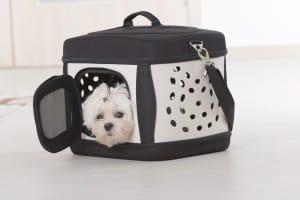 Nicht jede Hundebox ist faltbar. In Ihrem Test sollten Sie auch Boxen aus Aluminium oder Plastik in Erwägung ziehen.