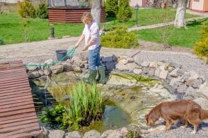 Zeit für die Teichpflege: Machen Sie Ihren persönlichen Teichschlammsauger-Test!
