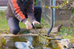 Machen Sie Ihren persönlichen Test für Teichfilter. Doch zuerst müssen Sie herausfinden, welche Filterart Sie benötigen.
